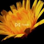 アイモバイル、スマホに特化した動画リワード広告でUnity対応プラグインの提供を開始